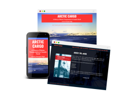 Arctic Cargo is a website to promote a book about the history of marine transportation in Canada's North, written by Christopher Wright. For more information check out the site arcticcargo.ca.